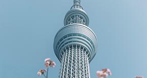 4D Japan